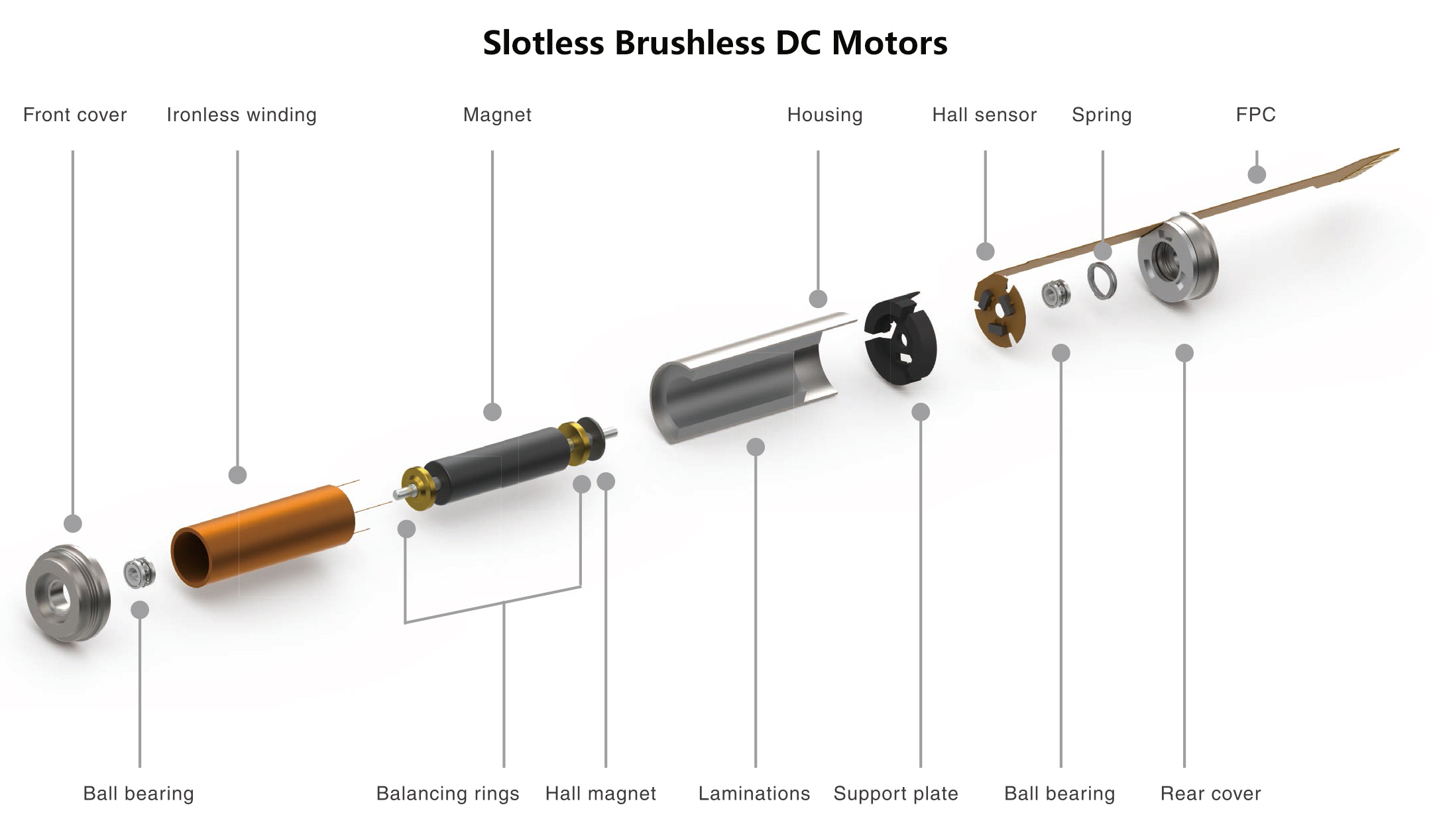 Slotless Brushless DC Motors Structure
